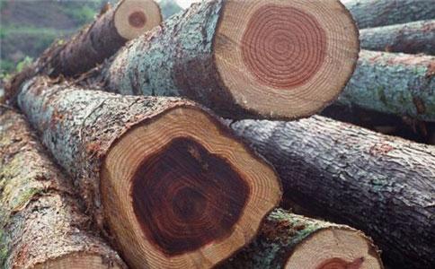 木材1s.jpg