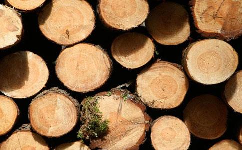 进口木材报关费用.jpg