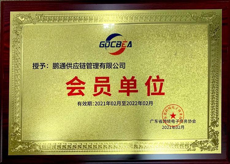 鹏通-广东省跨境电子商务协会